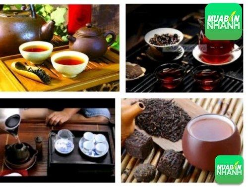 Lợi ích sức khỏe của trà Phổ Nhĩ